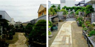 ichimon06-ooshima