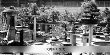 image-head-rekishi