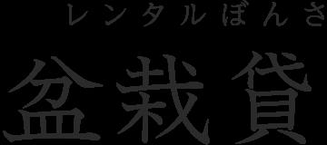 p6 rental logo